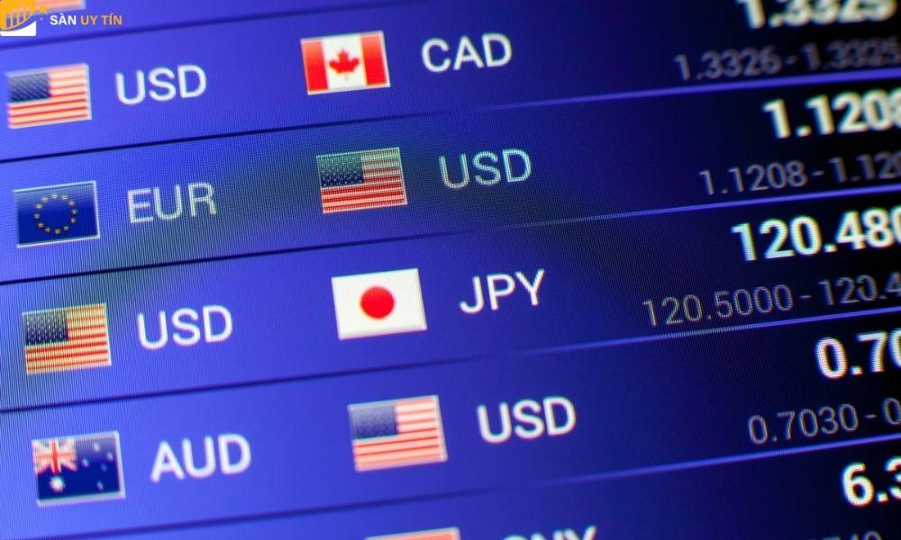 Trader Forex là gì? Họ làm gì trong thị trường ngoại hối?