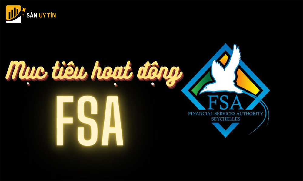 Định hướng và mục tiêu hoạt động của giấy phép FSA