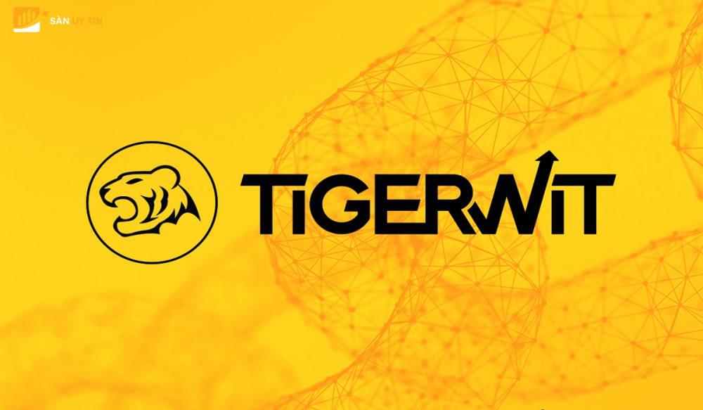 Đánh giá sàn TigerWit