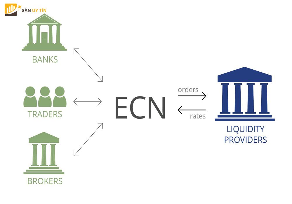Tài khoản ECN là gì và cách tìm một nhà môi giới ECN