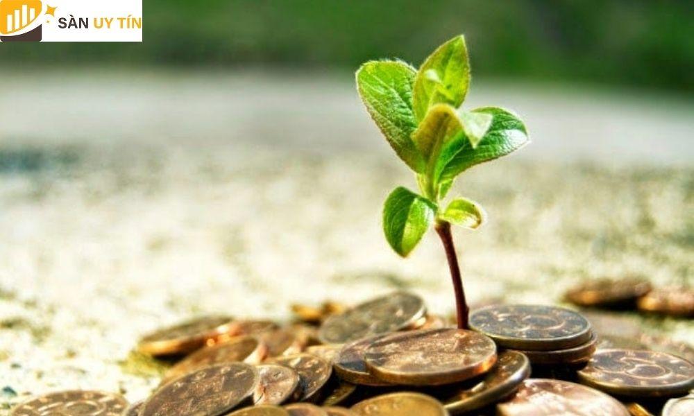 Được biết đến tên gọi khác là quản lý quỹ theo mô đun tỷ lệ phần trăm