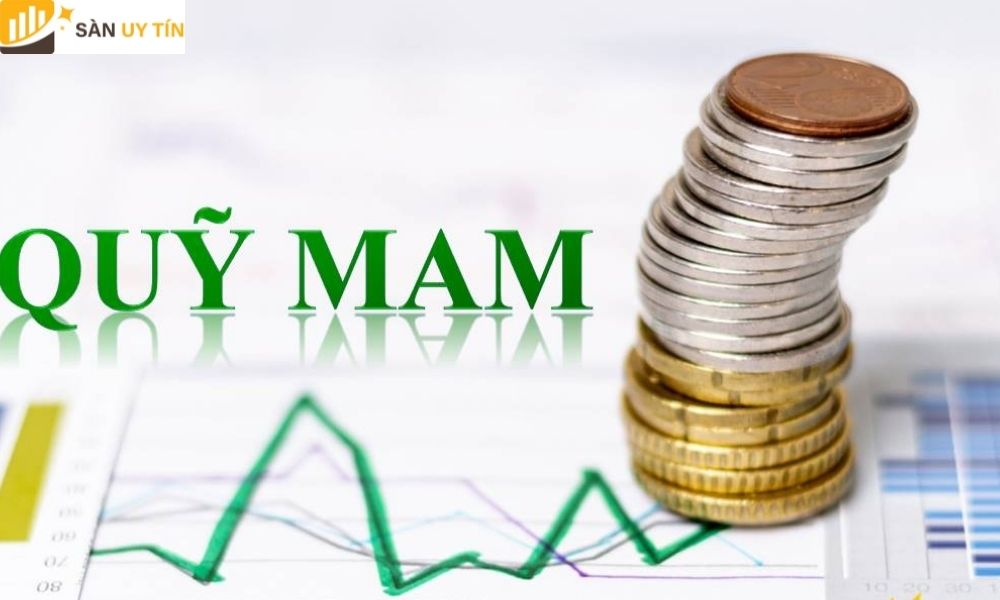 Một số tính năng nổi bật của quỹ MAM