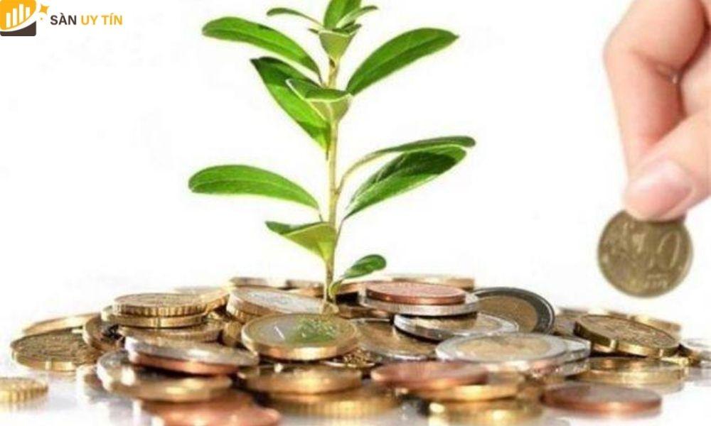 Trader sử dụng Margin trong Forex làm tăng khả năng lợi nhuận