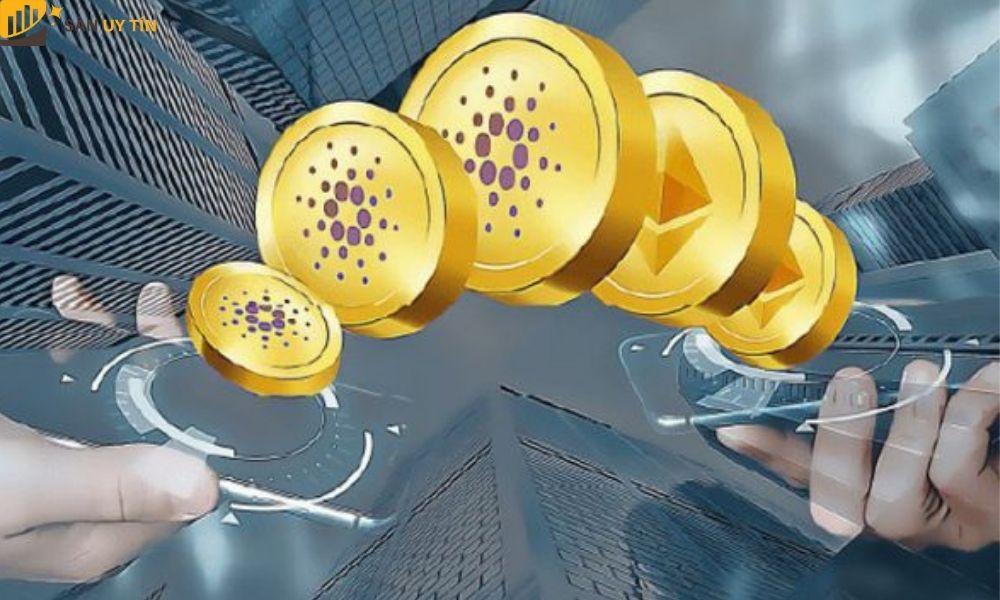 Coin rác tiềm năng được biết đến là một trong những đồng tiền mới ra đời